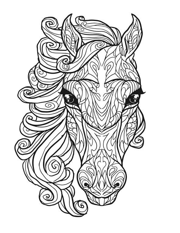 Pferde 1 | Ausmalbilder für Erwachsene