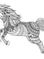 Pferde 2