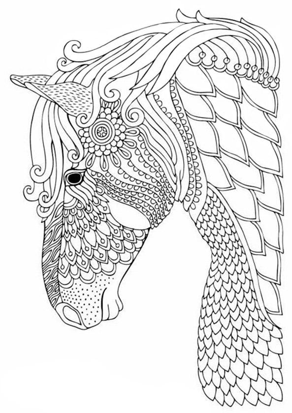 Pferde 4 | Ausmalbilder für Erwachsene