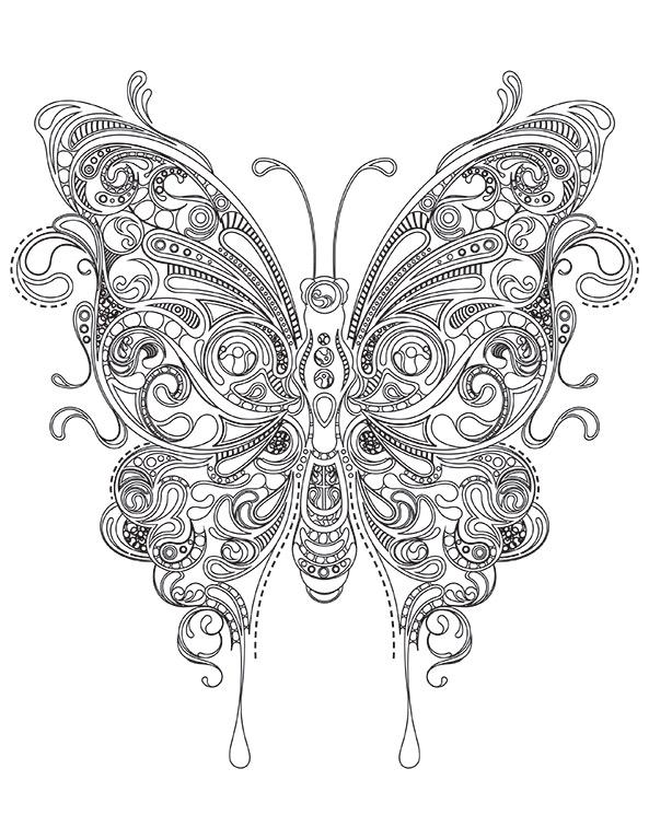 Schmetterling 1 Ausmalbilder Für Erwachsene