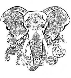 Ausmalbilder für Erwachsene Elefant 1