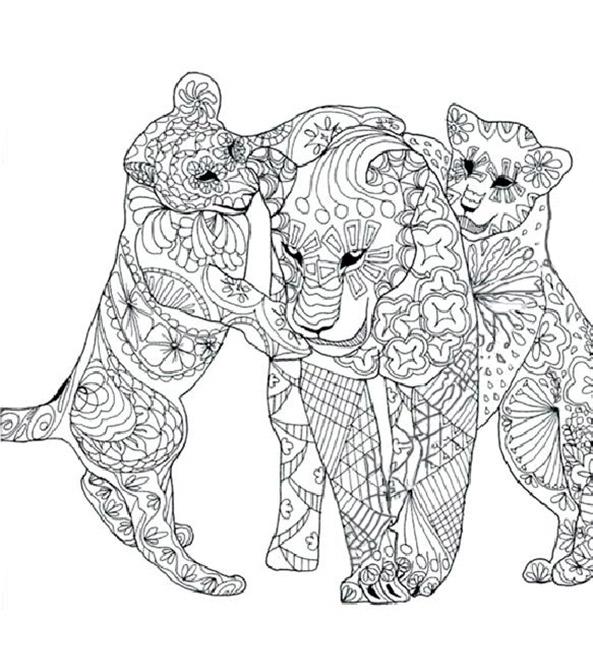 Tiere 5 Ausmalbilder Fur Erwachsene