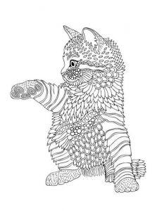 Malvorlagen Erwachsene Katze 2