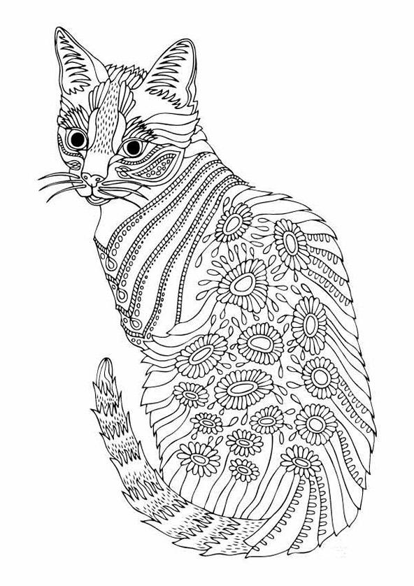 Katze 4 | Ausmalbilder für Erwachsene