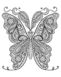 Malvorlagen für Erwachsene Schmetterling 2