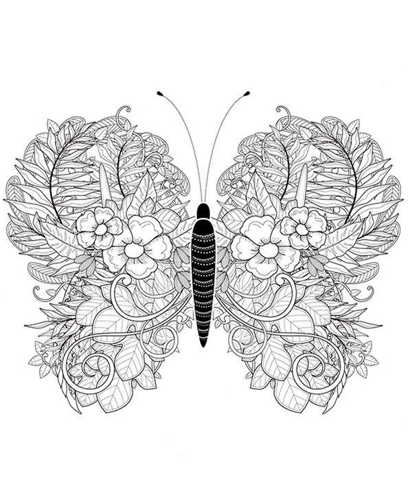 Malvorlagen Erwachsene Schmetterling 3