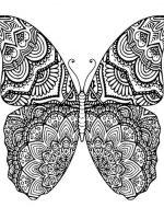 Schmetterling 7