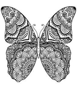 Malvorlagen Erwachsene Schmetterling 7