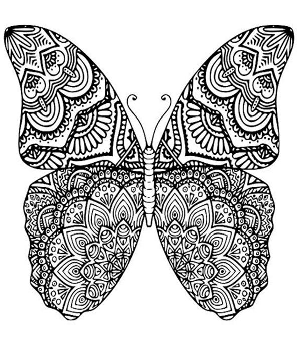 Schmetterling 7 Ausmalbilder Für Erwachsene