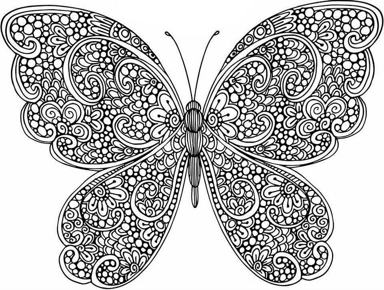 Schmetterling 8 | Ausmalbilder für Erwachsene