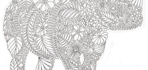 Malvorlagen Erwachsene Nashorn 1