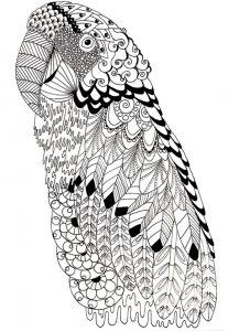Ausmalbilder Schwierige Papagei 1