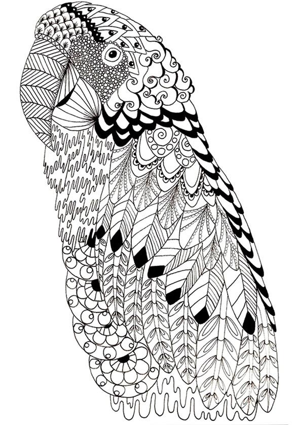 Ausmalbild Papagei Ausmalbilder Tiere Zum Ausdrucken 2020 04 18