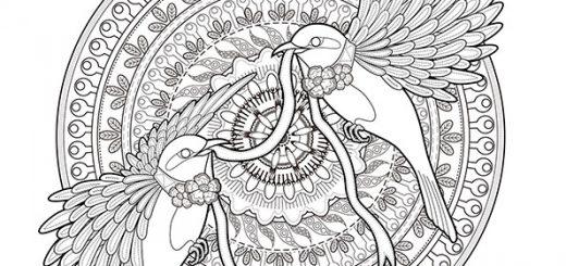 Mandala mit Vogel zum ausdrucken Schwierige