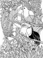 Malvorlagen Erwachsene Vogel Ausmalbilder Für Erwachsene