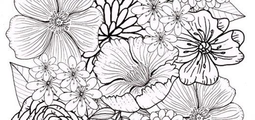 Malvorlagen Erwachsene Blumen 4