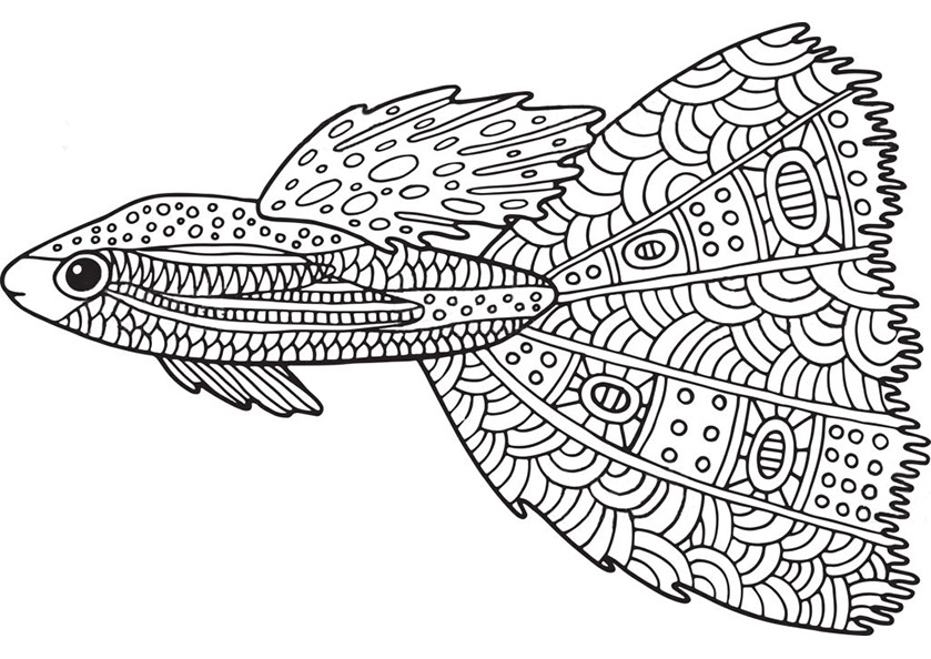 Fisch 4 | Ausmalbilder für Erwachsene