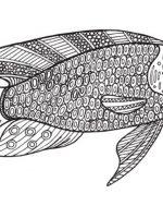 Malvorlagen Erwachsene Fische Ausmalbilder Für Erwachsene