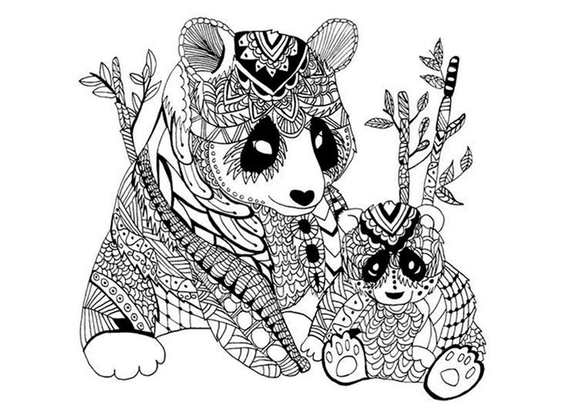 Malvorlagen Erwachsene Panda Bären 10