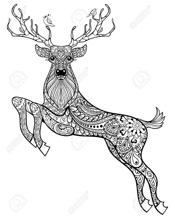 Bilder zum ausmalen für Erwachsene Hirsch 13Hirsch 13
