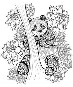 Malvorlagen für Erwachsene von Ein Pandabär