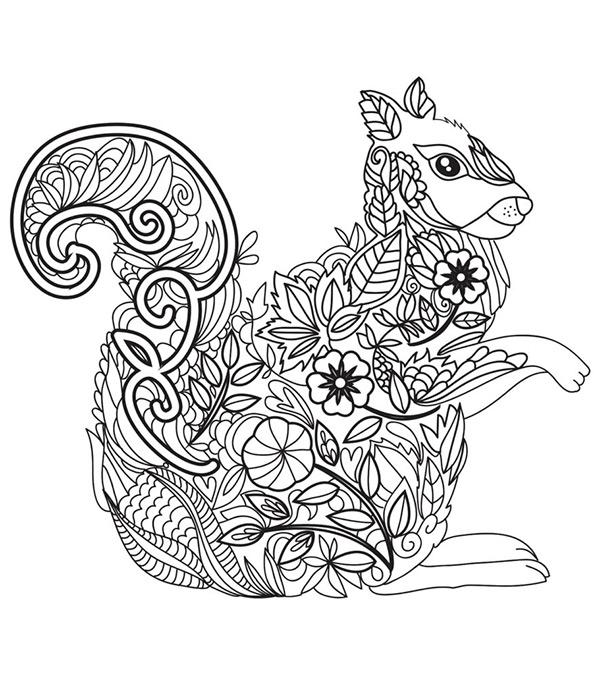 Malvorlagen Erwachsene Eichhörnchen und Blumen 21
