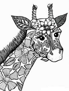 Malvorlagen Erwachsene Giraffe 22