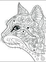Malvorlagen Erwachsene Katze | Ausmalbilder für Erwachsene