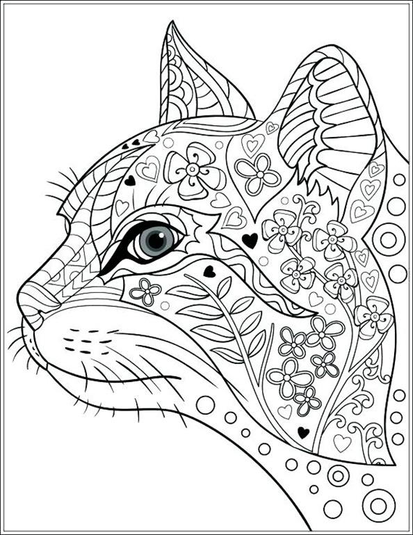 Katze 5 Ausmalbilder Für Erwachsene
