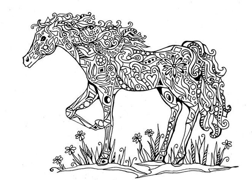 Malvorlagen Erwachsene Pferde 14