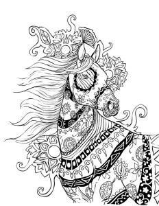 Malvorlagen Erwachsene Pferde 17