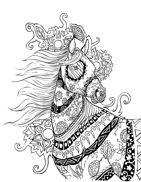 Pferde 17 | Ausmalbilder für Erwachsene