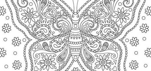 Malvorlagen Erwachsene Schmetterling 10