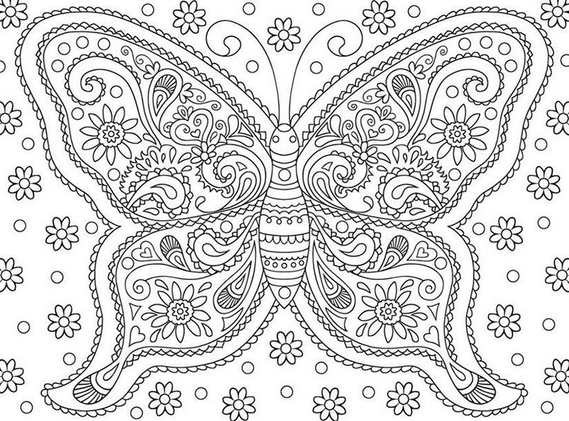 Schmetterling 10 | Ausmalbilder für Erwachsene