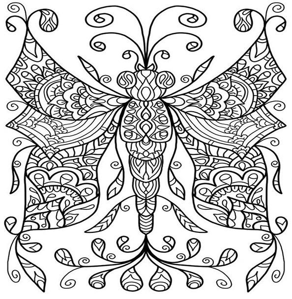Malvorlagen Erwachsene Schmetterling 11