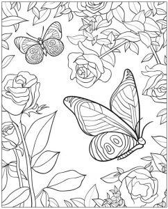 Malvorlagen Erwachsene Blumen und Schmetterling 13