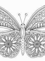 Schmetterling 15
